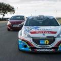 Peugeot (2)_Snapseed