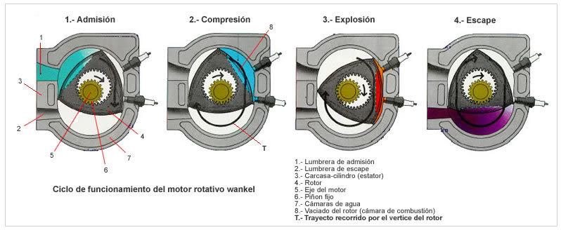fases wankel 1